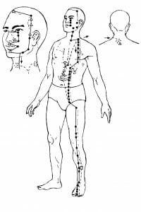 Meridian żołądka